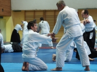 40Lecie Aikido w Polsce - Polanica-Zdrój 2016