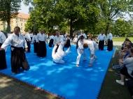 aINkido2019_20