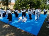 aINkido2019_22