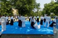 aINkido2019_30